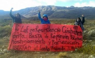 Avruj sobre la represión a mapuches: