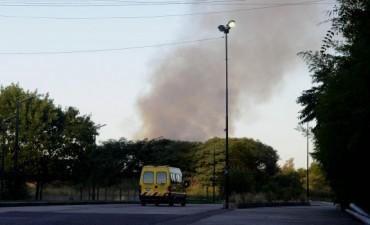 Vuelve a incendiarse la reserva ecológica en Puerto Madero