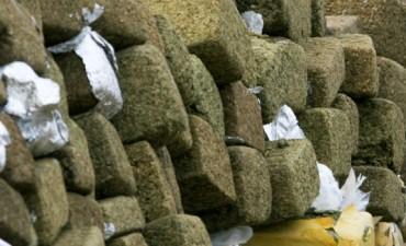 Juicio por un tonelada de marihuana