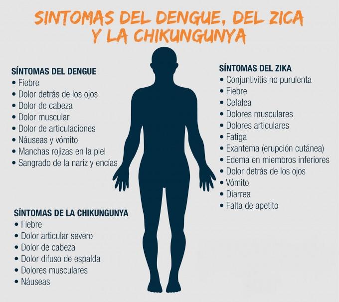 Super Diferencias y similitudes entre el chikungunya, el dengue y el zika BC95