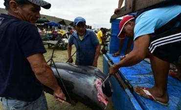 La enorme operación ilegal de barcos pesqueros de China en aguas de América Latina