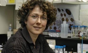Científica argentina recibió el premio L'oréal-Unesco por sus descubrimientos sobre el dengue