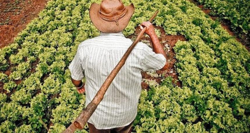 En Agricultura Familiar estamos en Estado de Alerta y Movilización