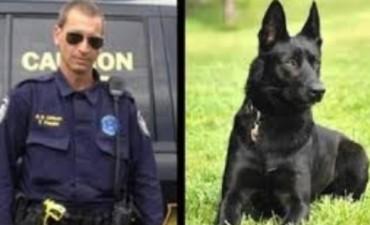 Perro policía salva a compañero del ataque de delincuentes