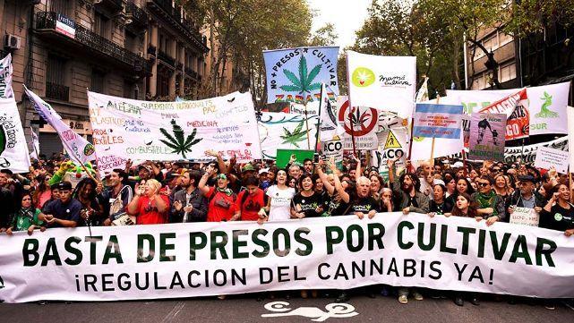 Marihuana: miles de personas exigieron la despenalización del autocultivo