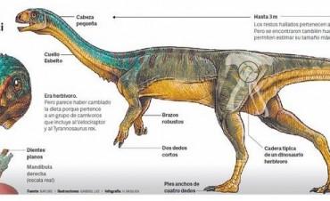 Expertos Argentinos hallan misteriosa especie de Dinosaurio