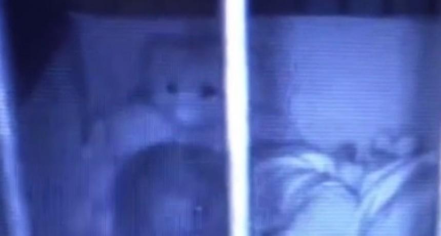 Espeluznante: un oso de peluche intenta abrazar a una beba en su cuna