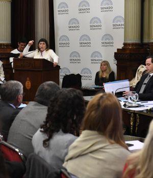 Una docena de expositores en el arranque del debate por el aborto