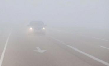 Precaución al transitar por Ruta Nacional Nº 60