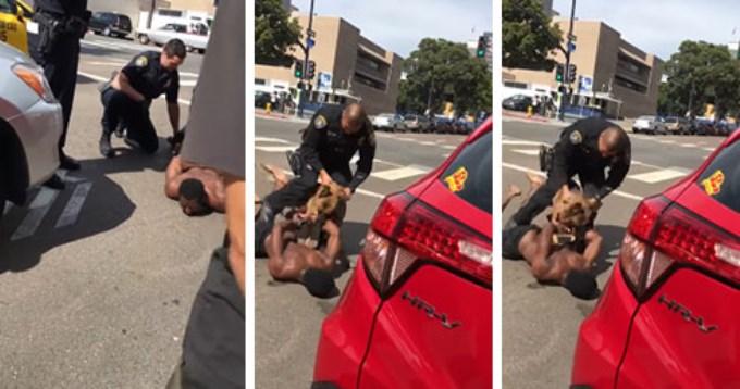 Perro policía mordió a sospechoso y casi se lo come