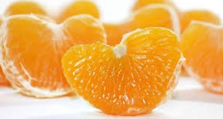 Los beneficios de las mandarinas: estas frutas hacen milagros