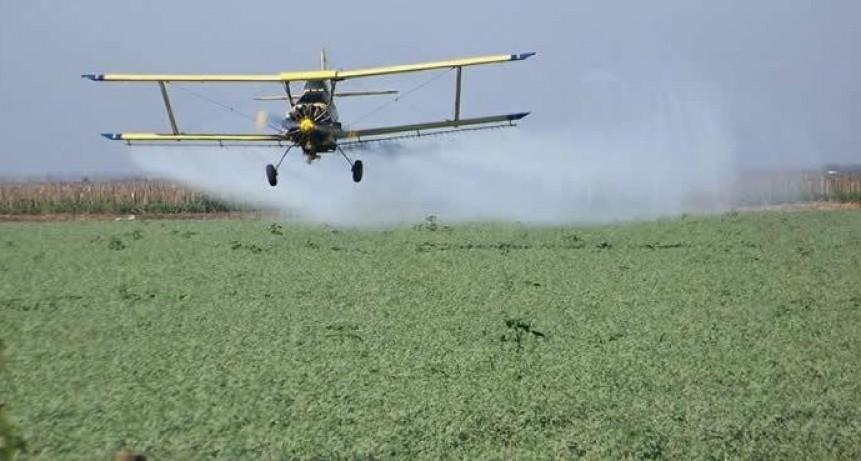 Por generar daño cerebral, Estados Unidos prohíbe al insecticida más usado en el agro argentino