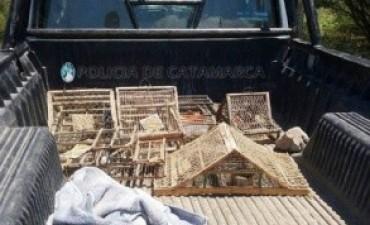 Secuestran aves silvestres y jaulas en puesto caminero de Nueva Coneta