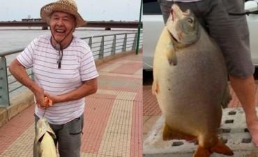 Pescó un Pacú de 29 kilos pero no tendrá récord mundial
