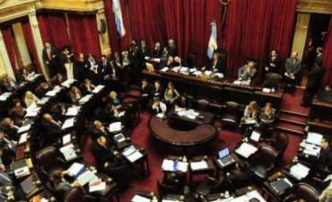 Juraron los 24 senadores electos en una sesión especial