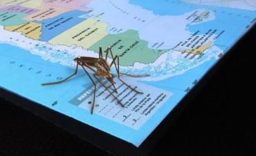 Así se distribuyen los casos de dengue en el país,Misiones la mas afectada