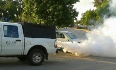 Fumigación en Recreo
