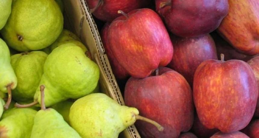 Brasil levantó la suspensión para el ingreso de peras y manzanas argentinas