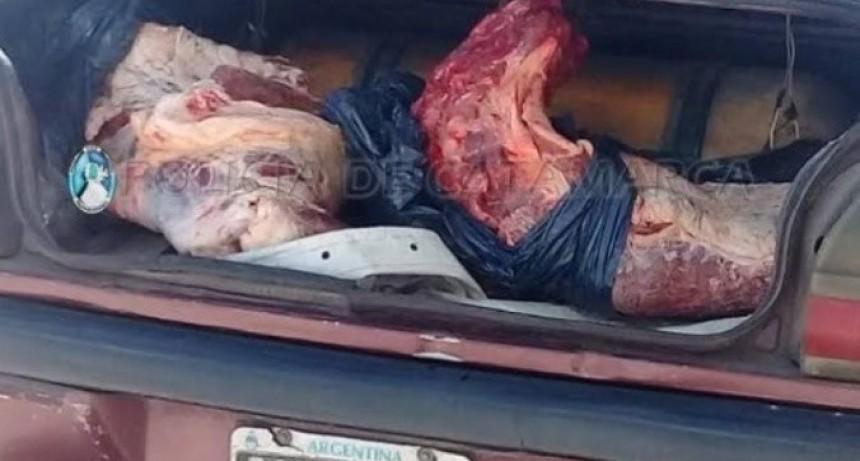 Decomisan 80 kilos de carne en El Portezuelo