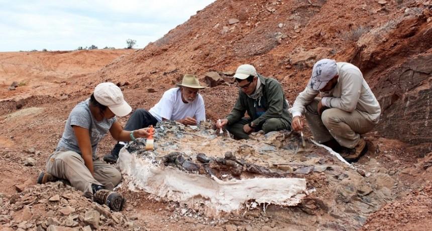 Descubren un extraordinario cementerio de animales de 220 millones de años