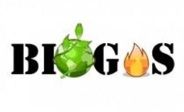 Planta de producción de biogás para Icaño