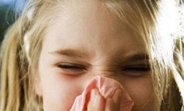 Todo lo que debés saber sobre la Gripe A