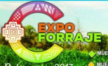 Expo Forrajes 2017 hasta el sábado en la Agrotécnica Nueva Coneta