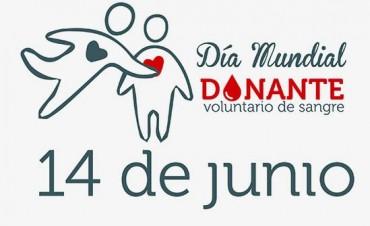 14 de junio- Día Mundial del Donante de Sangre