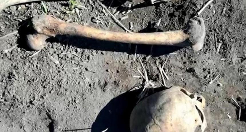Rusia: halló el esqueleto del ex de su esposa en el jardín