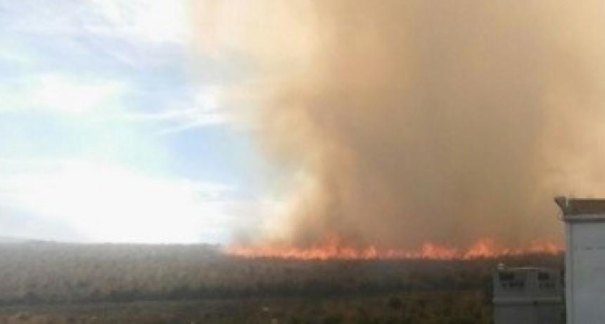 El Incendio forestal ya consumió mas de 7 hectáreas en el cerro Ancasti