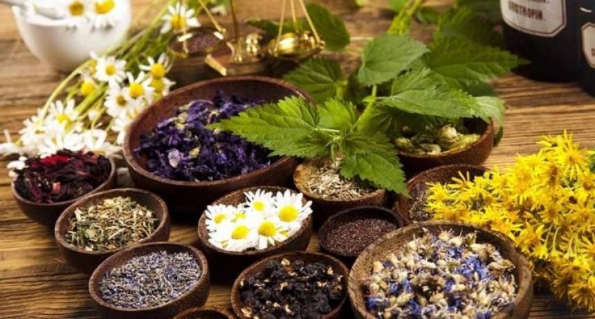 Naturopatía y Terapias Naturales