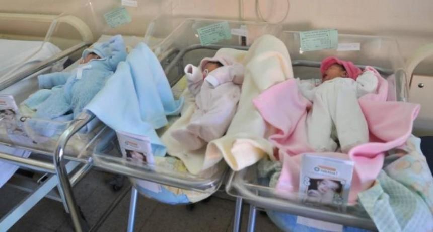 Nacieron trillizos en la Maternidad Provincial