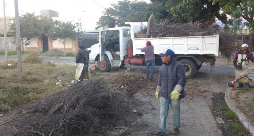 Operativos de limpieza en barrios y loteos de la ciudad