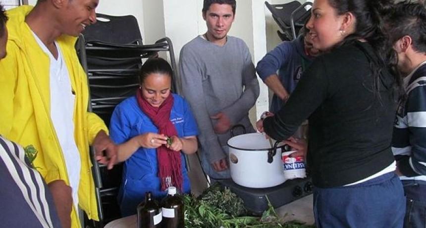 Hospital Colombiano cura a sus pacientes con plantas