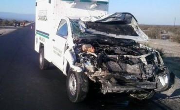 RUTA 46: Una ambulancia chocó con dos equinos
