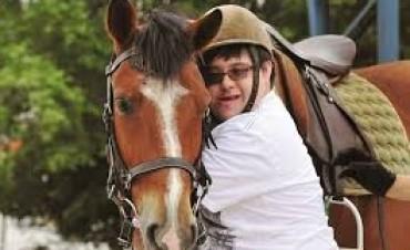 Maldad sin limites: Roban cuatro caballos entrenados para equinoterapia
