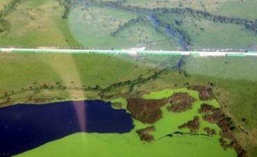 """Una ONG platense denuncia que peligra la integridad de la """"Laguna Los Patos"""" en Punta Lara"""