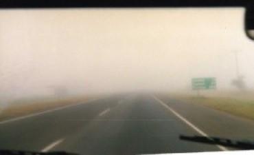 A causa de la poca visibilidad  impactó contra un equino