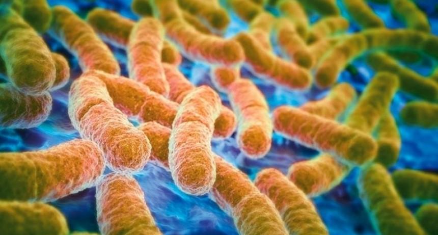 Los 6 edulcorantes tóxicos para la flora intestinal