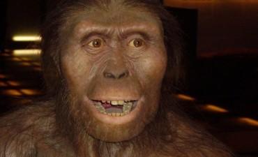 ¿Quién era Lucy el fósil al que rinde homenaje Google?