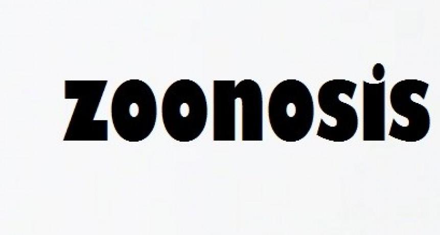 ZOONOSIS: denuncio matanza de perros y pide precaución ya que el veneno que se utilizó puede afectar a cualquier ser vivo