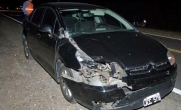 Un niño de 11 años fallecio tras ser atropellado por un auto cuando cruzaba la ruta