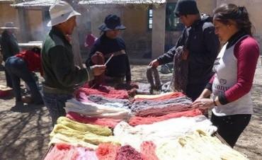 Tiñen sedas, lana y fibra de llama con hortalizas de la Puna Jujeña